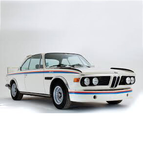 BMW CSL Roll Cages